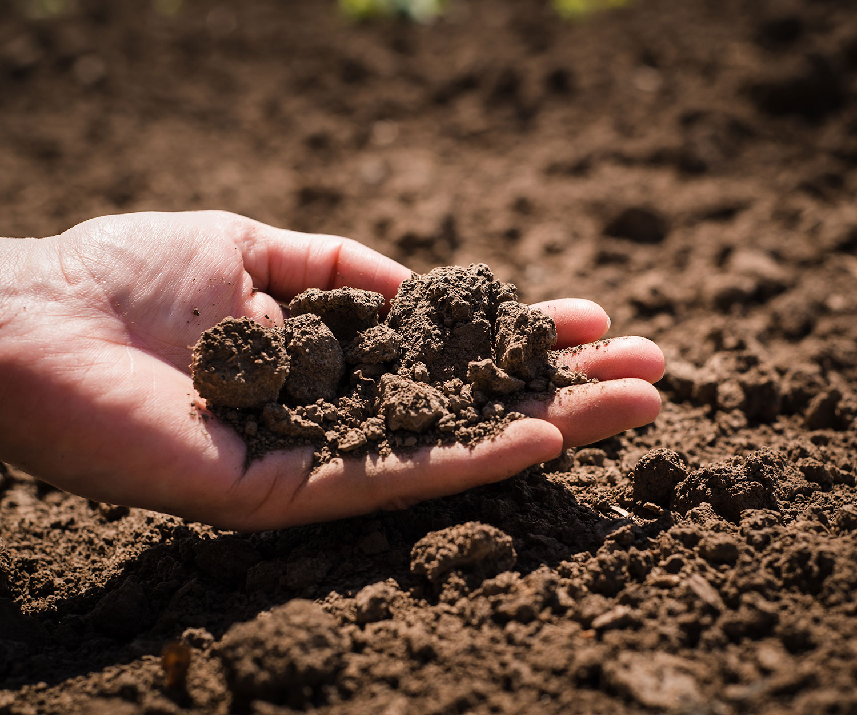 Notre plan agroenvironnemental de fertilisation (PAEF)  favorise le développement d'une agriculture durable, propre, efficace, productive et rentable.