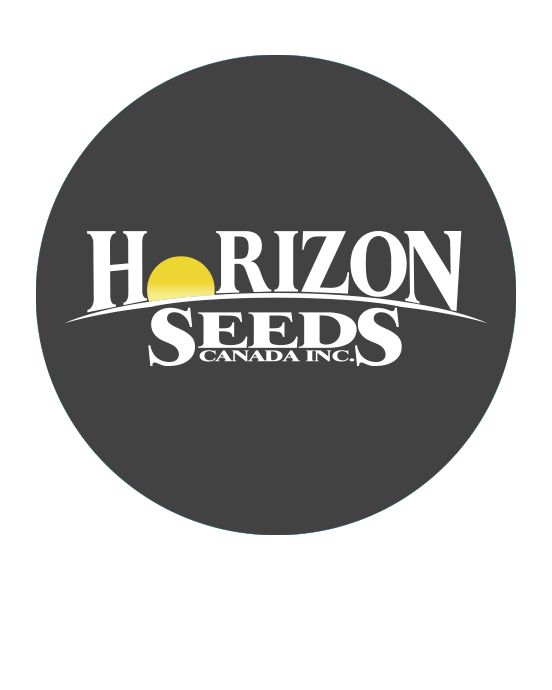 Horizon Seeds - Maïs conventionnel