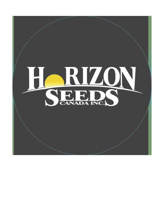Horizon Seeds - Maïs conventionnel