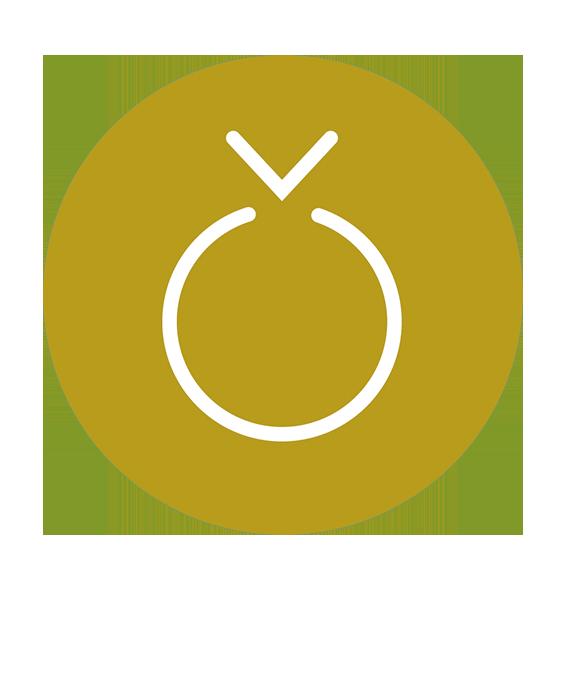 Produits de semences Synagri - Céréales